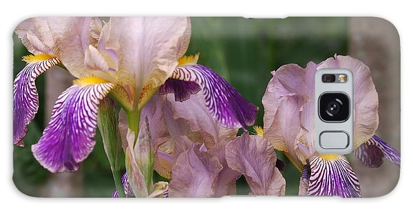 Old-fashioned Iris Galaxy Case by Randy Bodkins