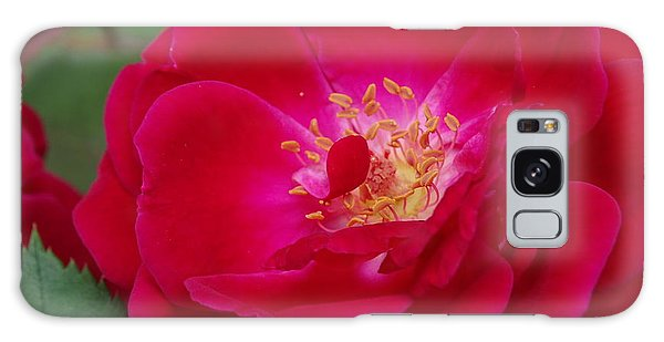 Old Homestead Rose Galaxy Case