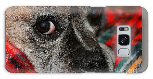 Galaxy Case featuring the photograph Old Man Boxer by Debbie Stahre