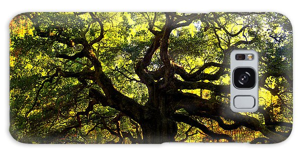 Old Old Angel Oak In Charleston Galaxy Case