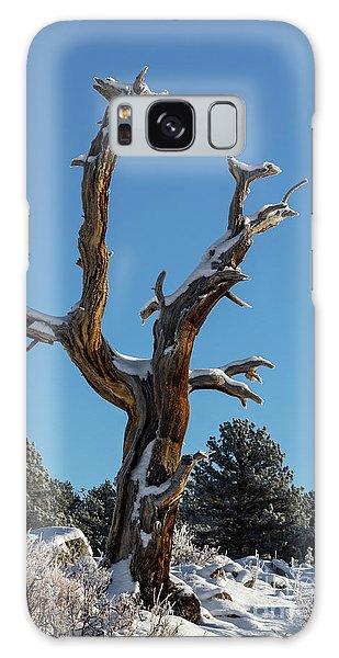 Old Tree - 9167 Galaxy Case