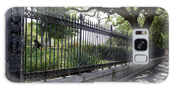 Old Tree And Ornate Fence Galaxy Case