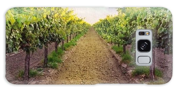 Food And Beverage Galaxy Case - Old #vineyard Photo I Rescued From My by Shari Warren