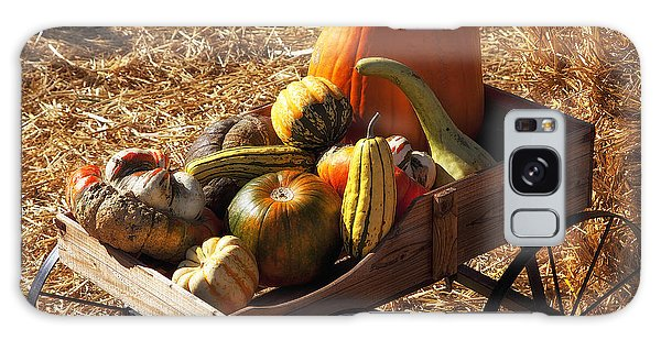 Gourd Galaxy Case - Old Wagon Full Of Autumn Fruit by Garry Gay