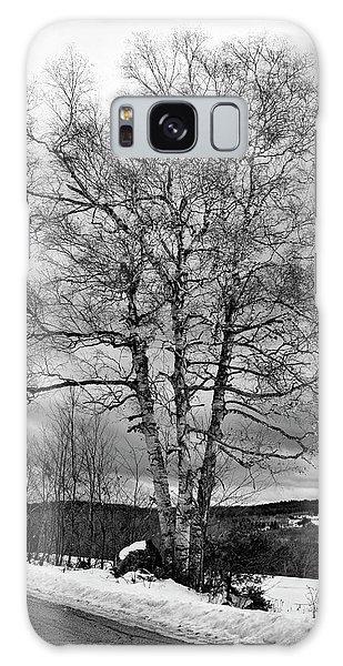 Old White Birch Galaxy Case