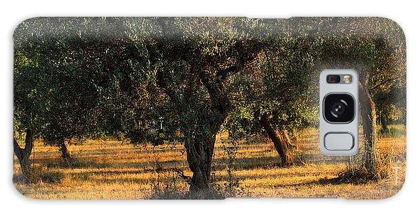 Olive Grove 3 Galaxy Case