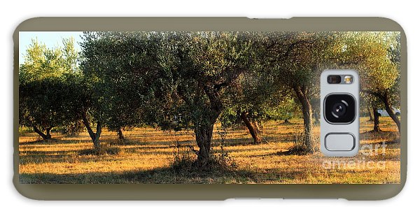Olive Grove 3 Galaxy Case