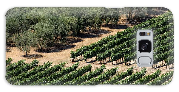 Olive Grove Meets Vineyard Galaxy Case