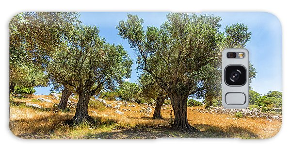 Olive Branch Galaxy Case - Olive Grove by Tsafreer Bernstein