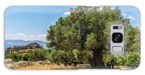 Olive Branch Galaxy Case - Olive Tree And Nimrod Fortress by Tsafreer Bernstein