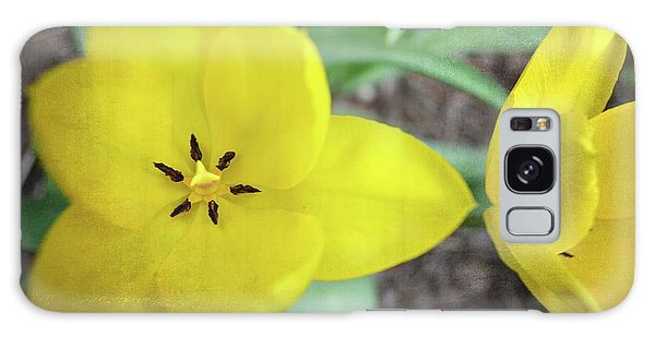 One And A Half Yellow Tulips Galaxy Case by Michelle Calkins
