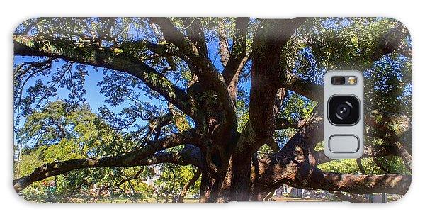 One Friendship Tree Galaxy Case