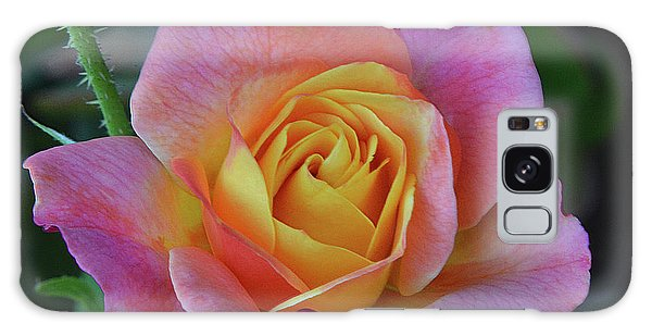 One Of Several Roses Galaxy Case