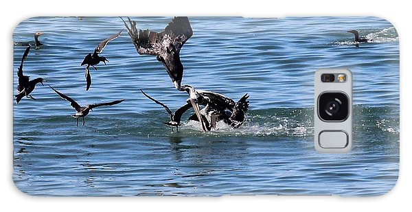 One Pelican Diving  Galaxy Case