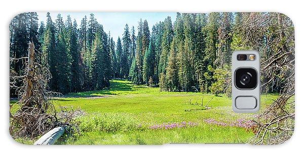Open Meadow- Galaxy Case