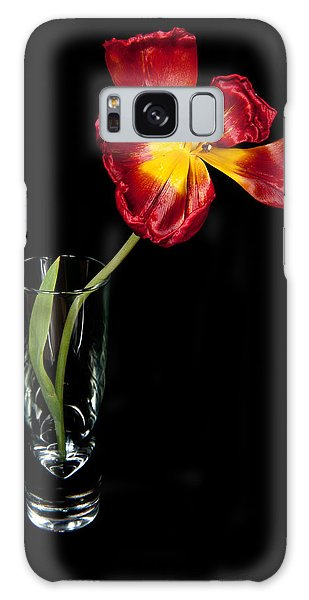 Open Red Tulip In Vase Galaxy Case by Helen Northcott