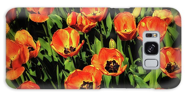 Tulips Galaxy Case - Open Wide - Tulips On Display by Tom Mc Nemar