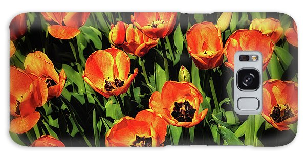 Tulip Galaxy S8 Case - Open Wide - Tulips On Display by Tom Mc Nemar