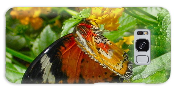 Lacewing Butterfly Galaxy Case by Deborah Dendler