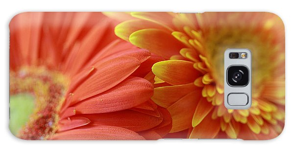 Orange And Yellow Daisies Galaxy Case