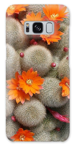 Orange Cactus Flowers Galaxy Case by Mark Barclay