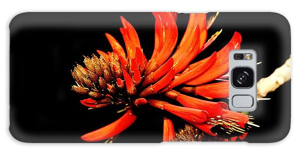 Galaxy Case featuring the photograph Orange Clover II by Stephen Mitchell