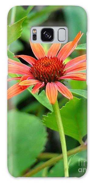 Orange Coneflower Galaxy Case