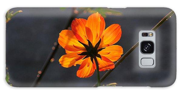 Orange Cosmo Galaxy Case