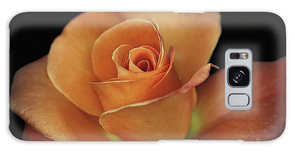 Orange Cream Galaxy Case by Elaine Malott