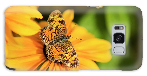 Galaxy Case featuring the photograph Orange Crescent Butterfly by Christina Rollo