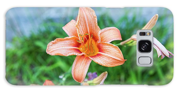 Orange Daylily Galaxy Case