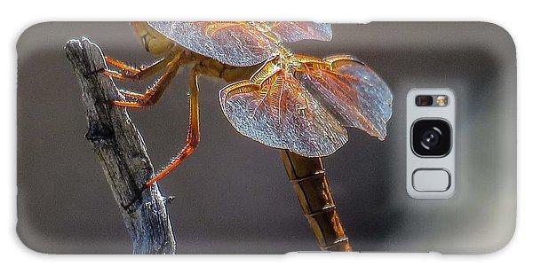 Dragonfly 2 Galaxy Case
