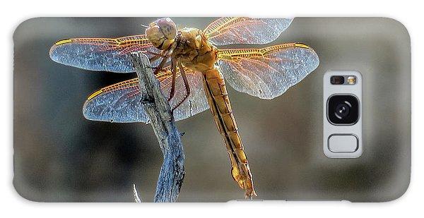 Dragonfly 6 Galaxy Case