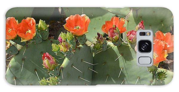 Orange Dream Cactus Galaxy Case