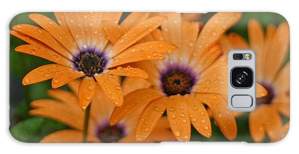 Orange Gazania Galaxy Case
