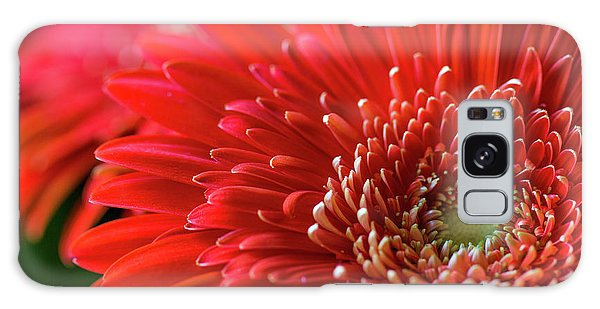 Galaxy Case featuring the photograph Orange Gerbera by Clare Bambers