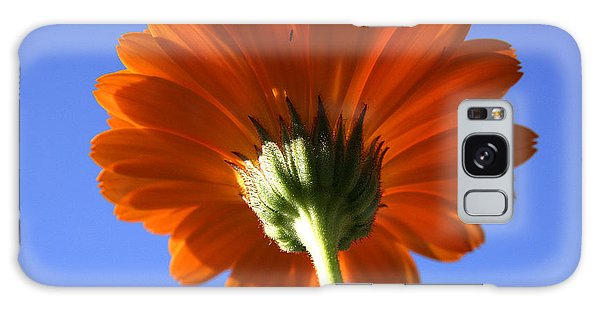 Orange Gerbera Flower Galaxy Case
