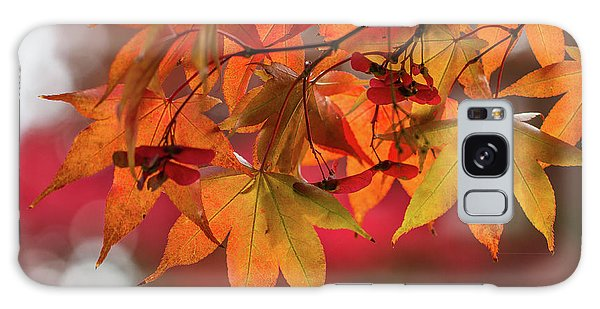Galaxy Case featuring the photograph Orange Maple Leaves by Clare Bambers