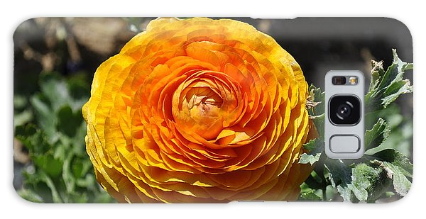 Orange Ranunculus Galaxy Case