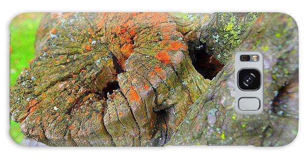 Orange Tree Stump Galaxy Case