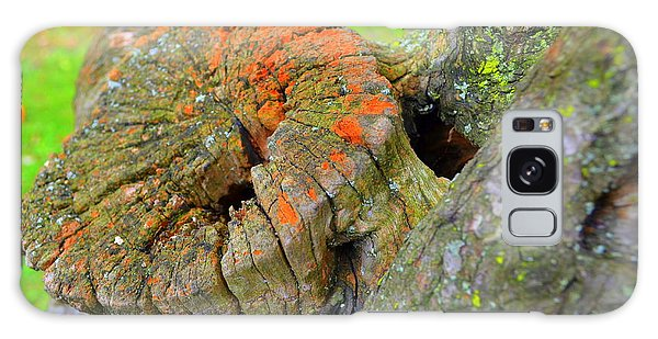 Orange Tree Stump Galaxy Case