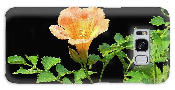Orange Trumpet Flower Galaxy Case