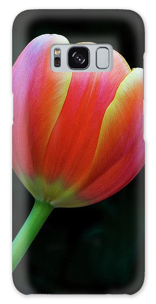 Orange Tulip Galaxy Case