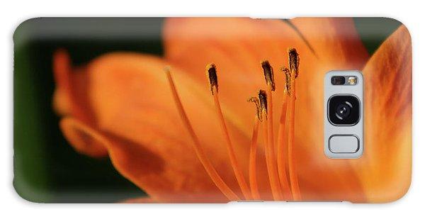 Orange Wave 3096 H_2 Galaxy Case