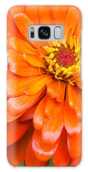 Orange Zinnia After A Rain Galaxy Case by Jim Hughes