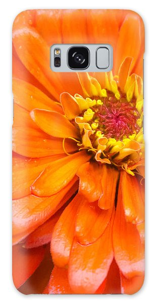 Orange Zinnia After A Rain Galaxy Case