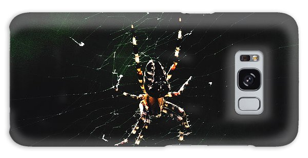 Orb Weaver Galaxy Case