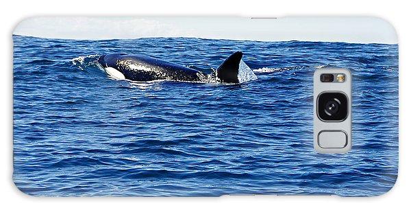 Orca Galaxy Case