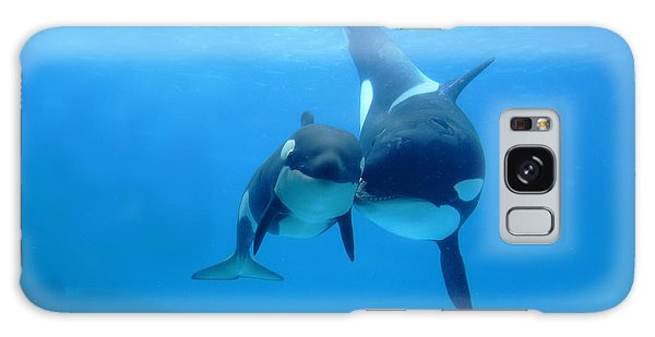 Orca Orcinus Orca Mother And Newborn Galaxy Case