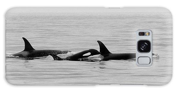 Orcas Bw Galaxy Case